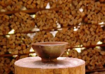 間伐材の薪はエコエネルギー:10束の薪=茶碗1つ